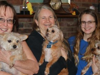 Doggies Tattoo, Gizmo and Gidget